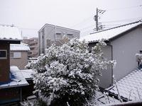 s-RIMG6309.jpg